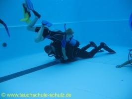 Flipper 2 Ausbildung beendet, Merlin, Janik, Jan Ole und Florian
